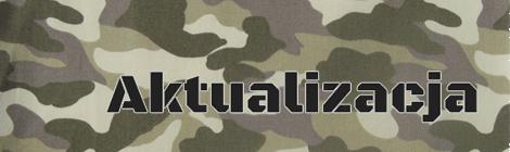 Nowe barwy maskujące na schronie w Dobieszowicach