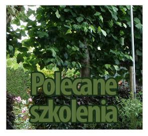 Polecane_szkolenia
